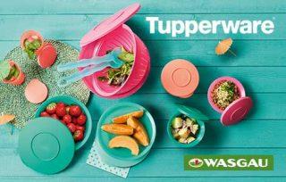 30_Wasgau_Tupperware_2021_Website_845x300px_210624_beitragsbild