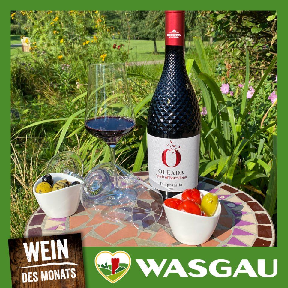WASGAU_Post_1080x1080px_KW35_WDM